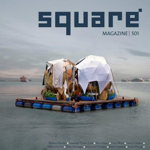SquareMag 501